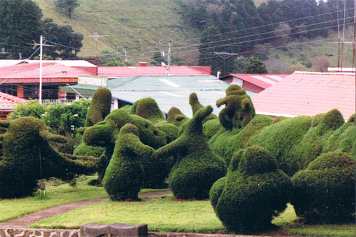 Trazz_topiary