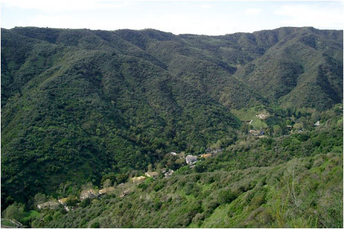 Mandeville_canyon