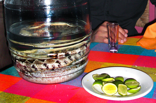 Panchos rattlesnake tequila
