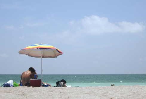 Turtle_beach