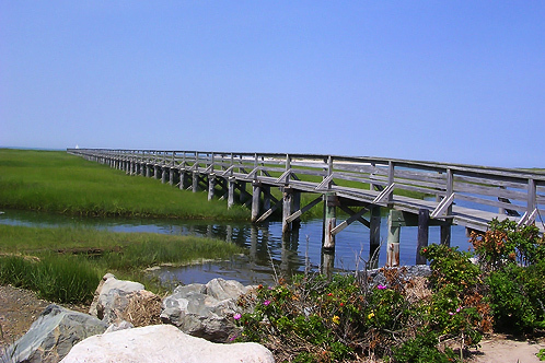 Bass-hole-boardwalk_yarmouth-ma-us-1