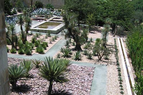 Jardin botanico santo domingo oaxaca images for Jardin oaxaca