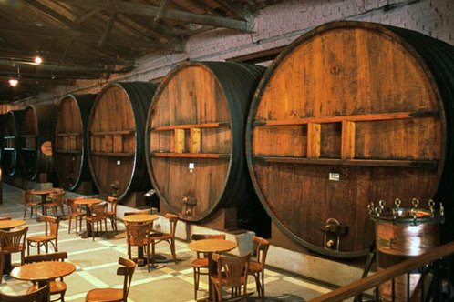 Argentina_winery