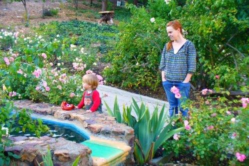 Oakland_rose_garden
