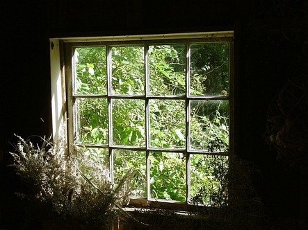 Pickity_herb_window