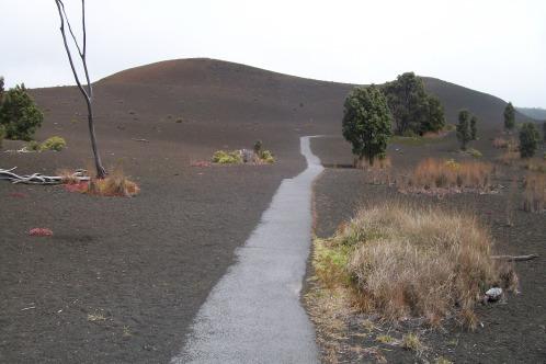 Devastation_trail