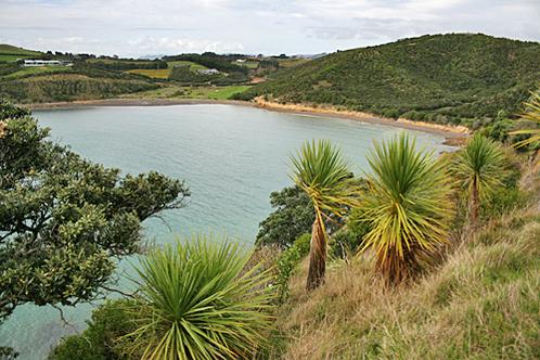 Newzealand-waihekeisland-small