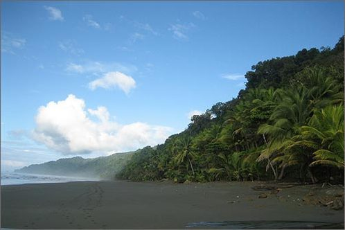 Hiking-the-beach-and-rainforest-at-parque-nacional-corcovado_-costa-rica