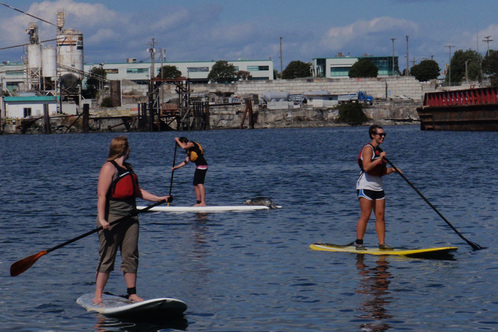 Stand-up-paddling-seal