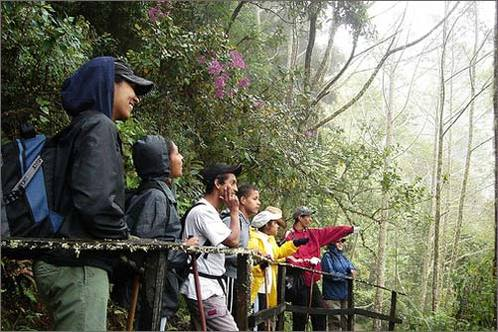 Birdwatching-at-parque-nacional-los-quetzales_-costa-rica