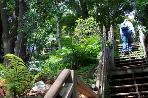 Filbert_street_steps