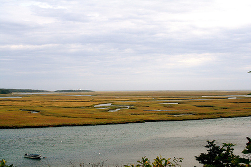Marsh