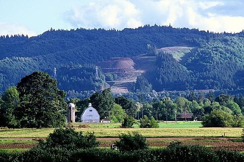 Sauvie_island_farm