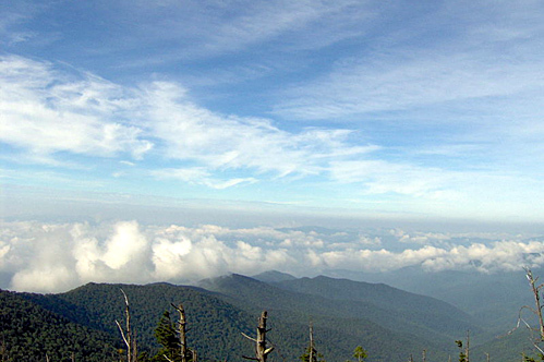 800px-clingmans-dome-view-s