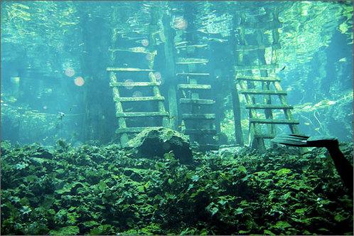 Yucatan_cave