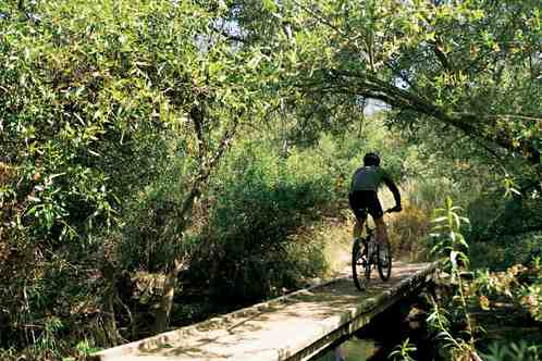 Biking_in_canyon_preserve