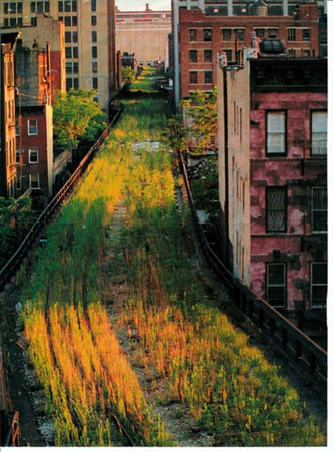 High Line Park Travel Tips Trippy