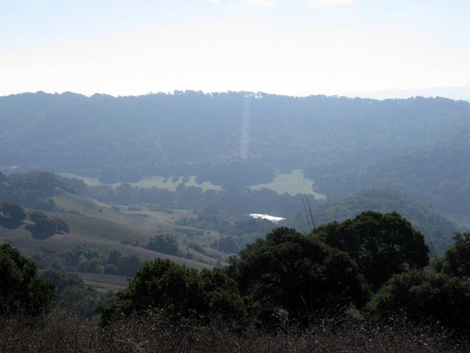 Trip photo #31/36 View of Briones Reservoir