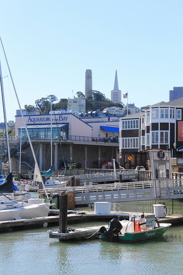 Trip photo #94/109 PIER 39 San Francisco