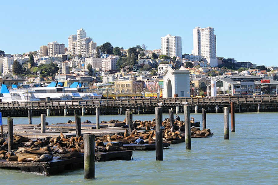 Trip photo #79/109 PIER 39 San Francisco