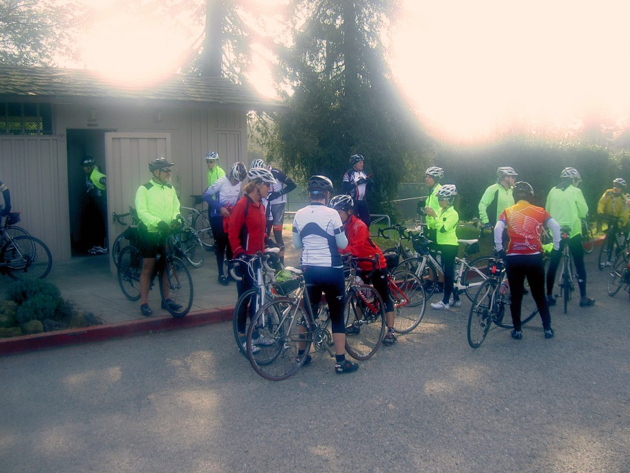 Trip photo #7/14 Regroup at Bay Trees park (also Fremont Freewheelers group)
