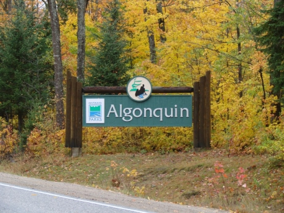 Trip photo #25/25 Algonquin Park