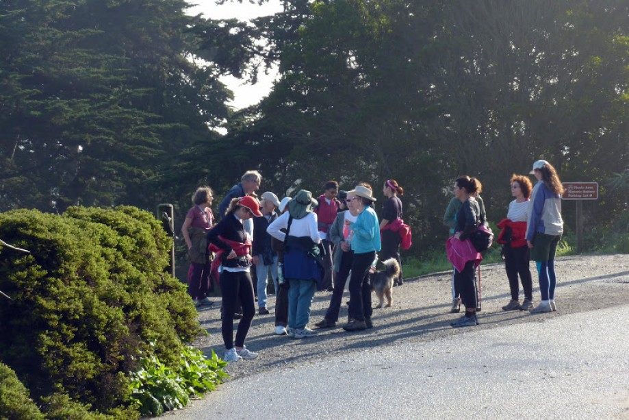 Trip photo #11/41 YWalkers Re-grouping