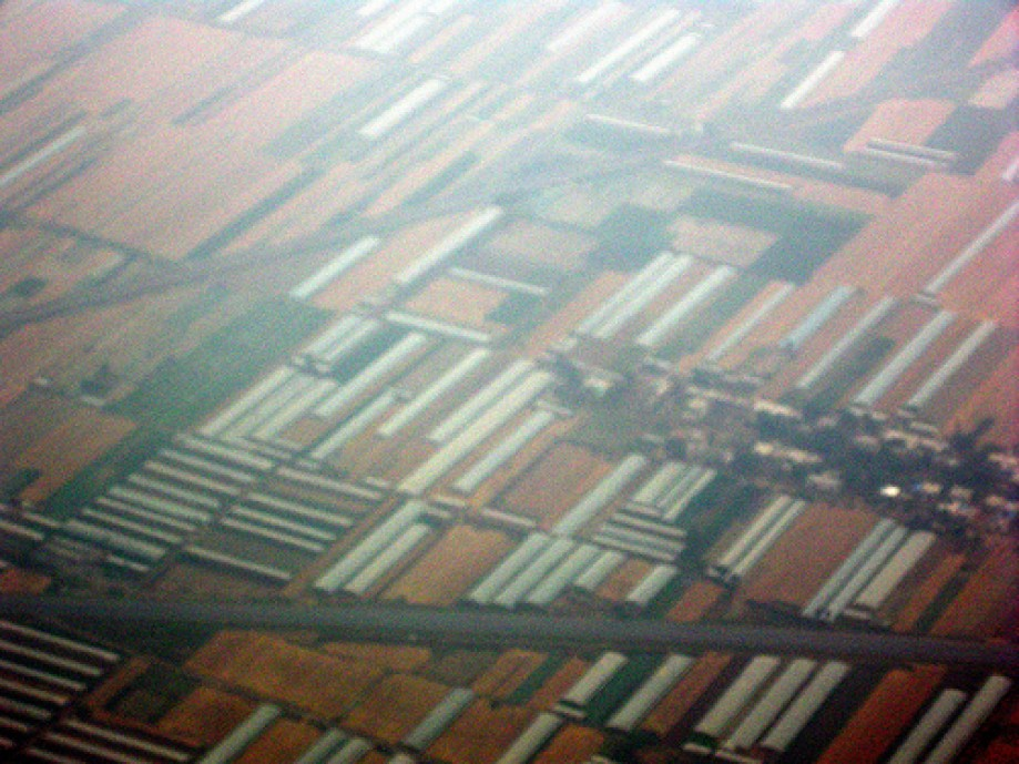 Trip photo #41/47 White Structures are Greenhouses, Brown is Wheat