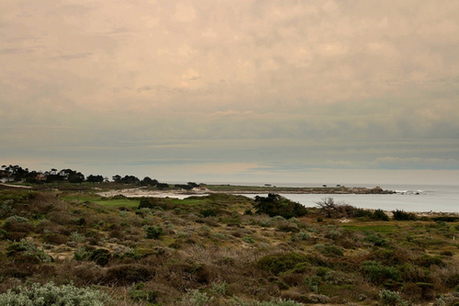 Trip photo #28/29 Spanish Bay
