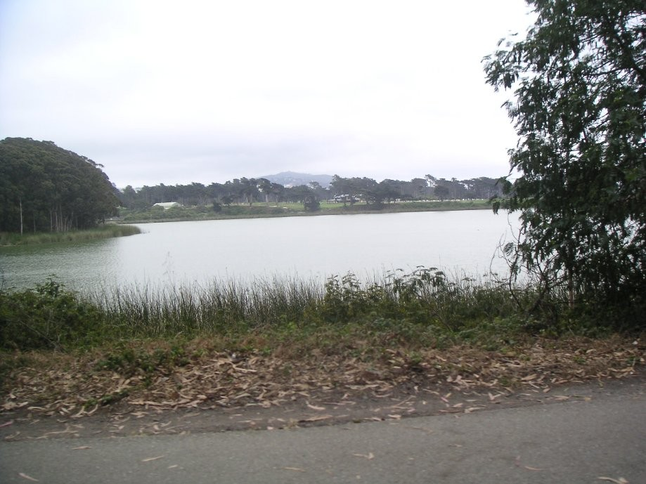 Trip photo #21/33 Lake Merced