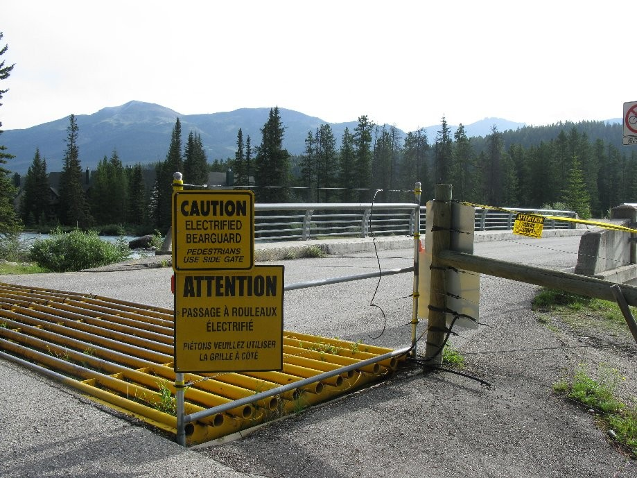 Trip photo #1/33 Electrified bear protection at Lake Louise campsite