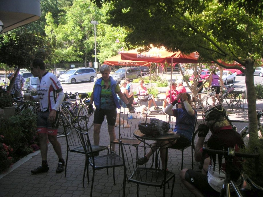 Trip photo #3/5 Refreshment stop at Peet's in Danville