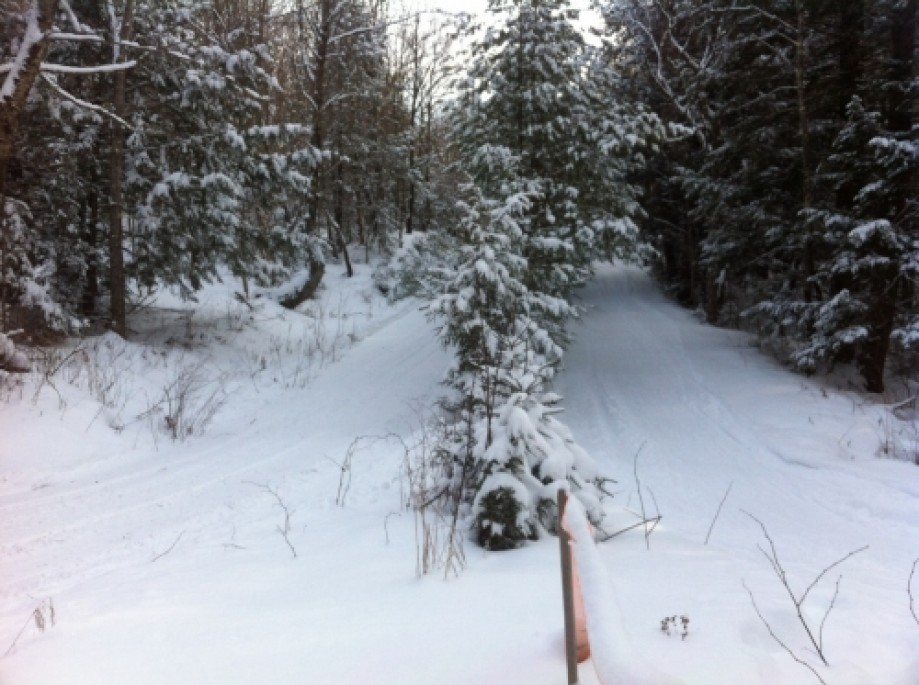 Trip photo #1/2 Snowmobiles left, Skier right