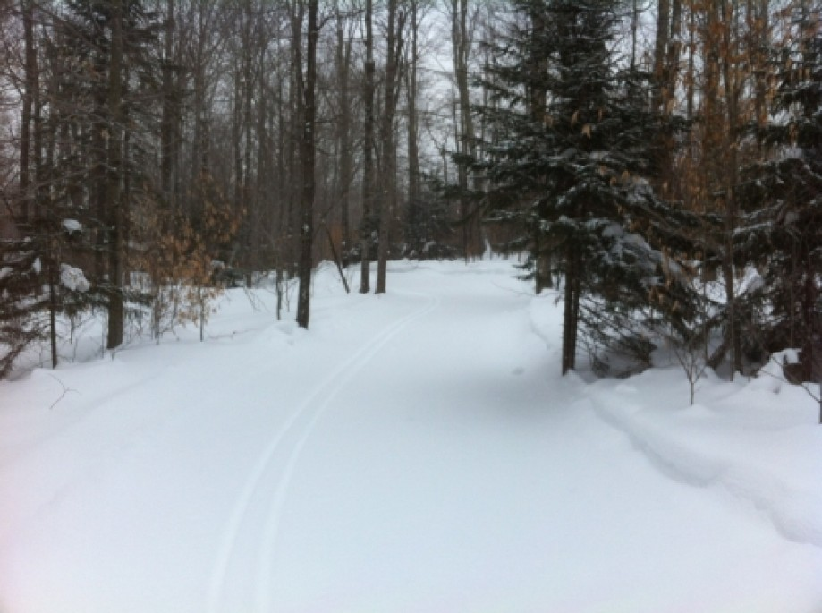 Trip photo #5/6 Southern Jct Upper and Lower Frost Trails