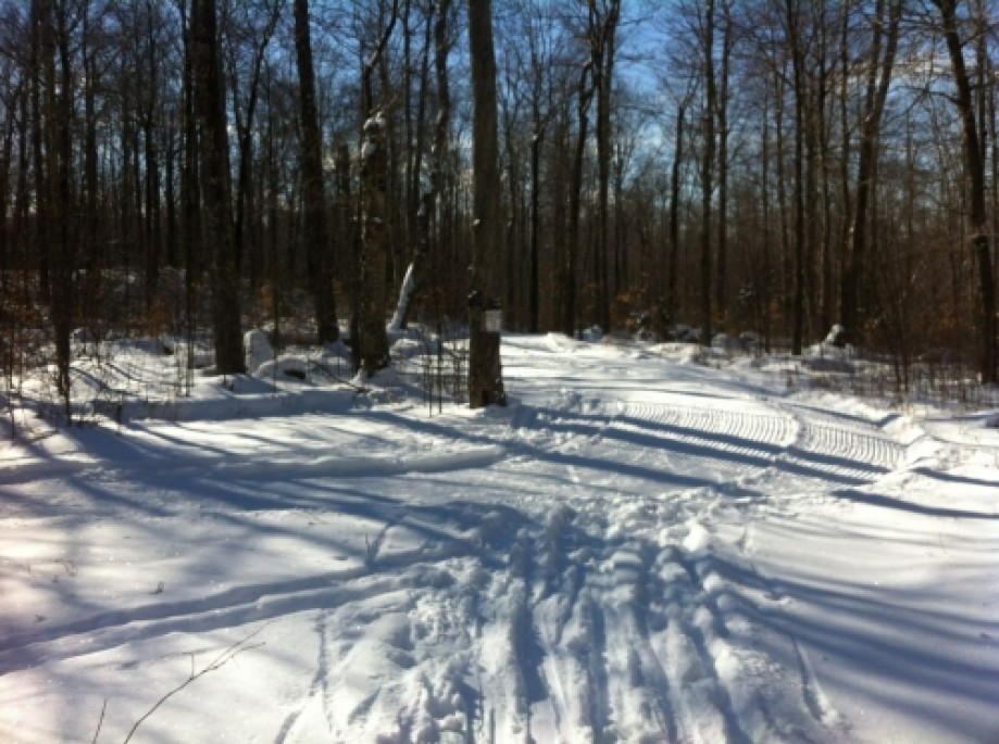 Trip photo #7/8 Back to Groomed Trail