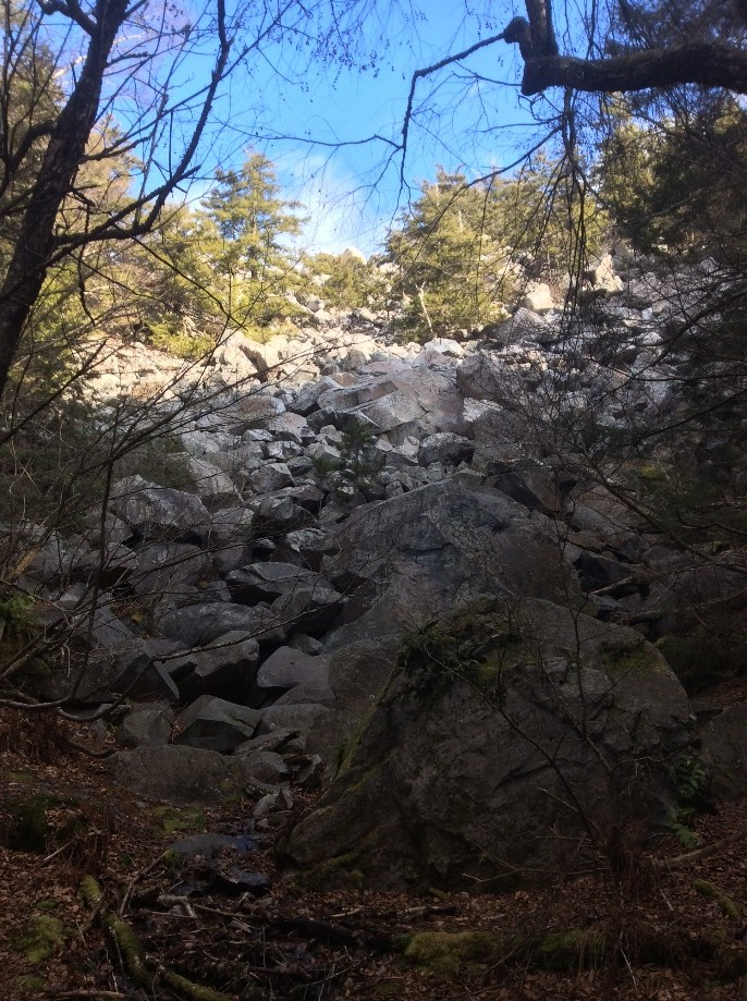 Trip photo #4/10 Bottom of the ravine: The Ice Beds
