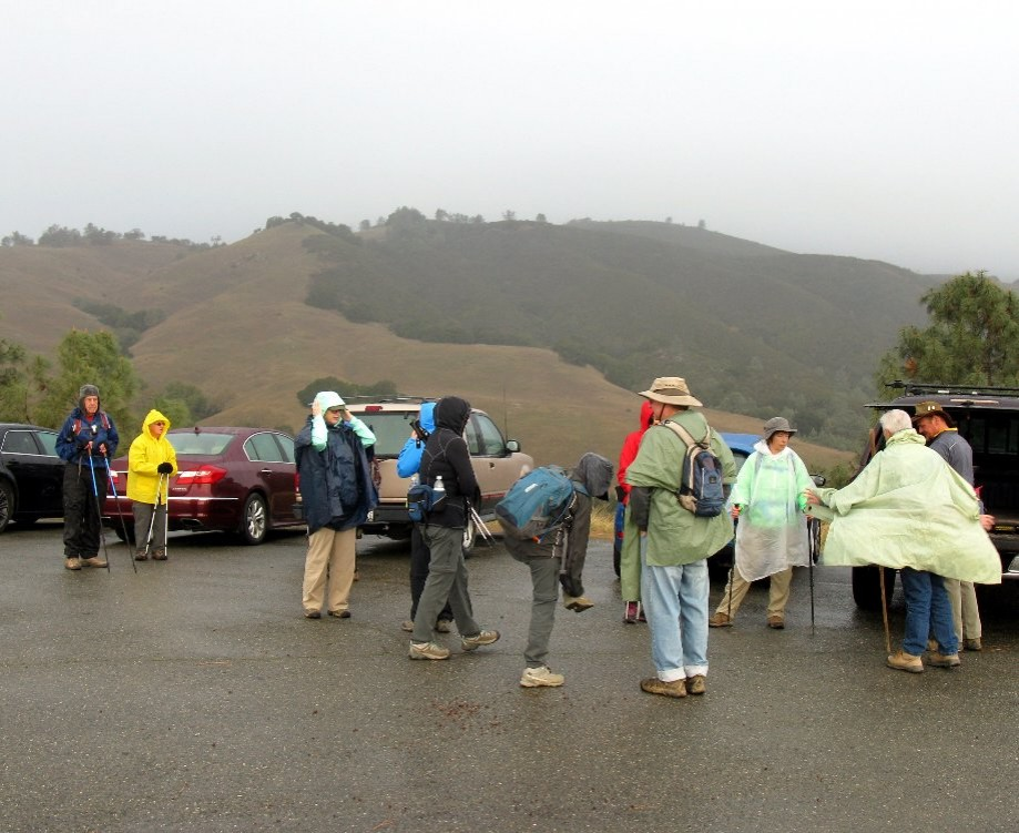 Trip photo #1/32 Gathering at Curry Pt. with light rain falling