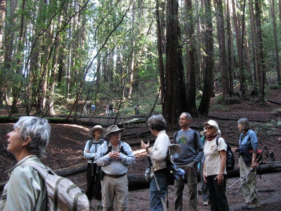 Trip photo #6/17 Regroup before climbing the Redwood Peak trail