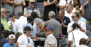 fan hit by foul ball