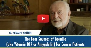 best-sources-of-laetrile