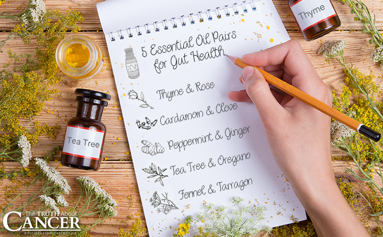 Discover 5 Essential Oil Pairs Good For Your Gut Health