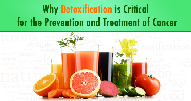 why_detoxification_is_critical