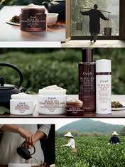 ZOOM IN: FRESH BLACK TEA COLLECTION
