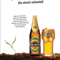 Bulmers / Digging our bit