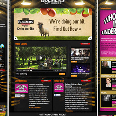 Bulmers / Vat House Facebook App
