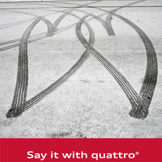 Audi / Say it with quattro