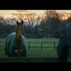 Horseware / Horseware: Rugs for Life