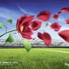 O2-rugby-rose