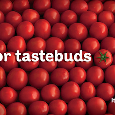 Heinz / Ketchup - Tastebuds