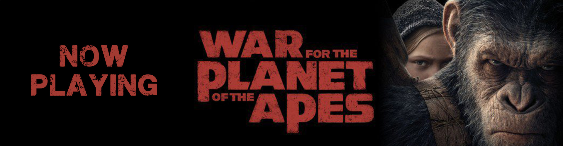 apes-now-playing